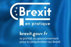 Logo Brexit en pratique - le portail du gouvernement pour la préparation au Brexit