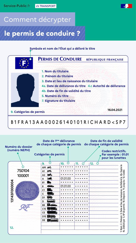 - Comment décrypter le permis de conduire? - plus de détails dans le texte suivant l'infographie